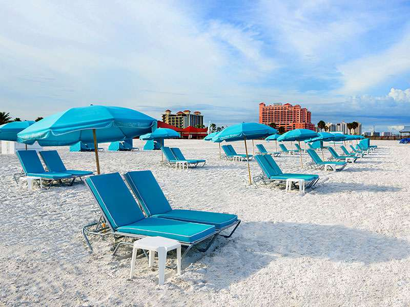 Boucher Brothers Hilton Clearwater Beach Boucher Brothers Management 305 535 8177